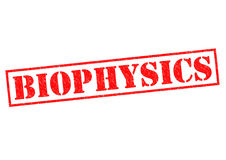BIOPHYSICS Stock Photography