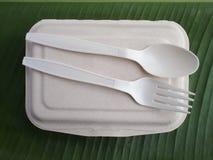 bioplastic匙子叉子和一次性午餐盒在香蕉生叶 免版税库存照片