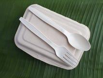 bioplastic匙子叉子和一次性午餐盒在香蕉生叶 免版税库存图片
