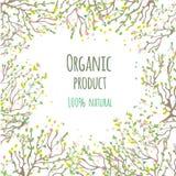 Bioprodukthintergrund mit Blättern und Blumen, Vektorillustration Stockfoto