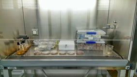Bioprospecting tipico installato in cappuccio della classe 2 fotografia stock