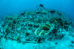 Biorocks av korallrever i Gili, Lombok, Nusa Tenggara Barat, Indonesien undervattens- foto royaltyfria foton