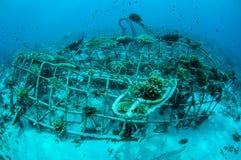 Biorocks von Korallenriffen in Gili, Lombok, Nusa Tenggara Barat, Indonesien-Unterwasserfoto Lizenzfreie Stockfotos