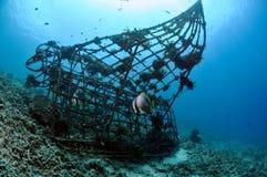 Biorocks von Korallenriffen in Gili, Lombok, Nusa Tenggara Barat, Indonesien-Unterwasserfoto Lizenzfreie Stockbilder
