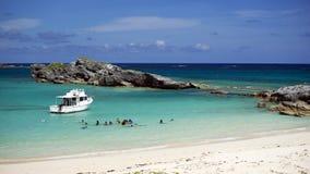 BIOS Ausflug - Fassbinder-Insel-Naturreservat, Bermuda lizenzfreies stockfoto