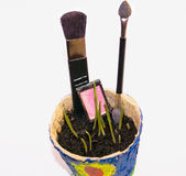 Bioschoonheidsmiddelen, make-up, Schoonheid en Gezondheid Stock Foto's