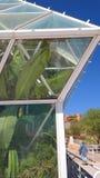 Biosfär 2 - växande frukt Arkivfoton