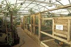 Biosfeer 2 kooien in Oracle in Tucson, AZ stock afbeelding