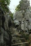biosfera Costa De Del rzut słusznych kilometrów las Marbella halna naturalna natura nieves raju parka rezerwy skały s sierra zolu obraz royalty free