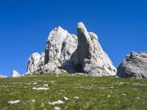 biosfera Costa De Del rzut słusznych kilometrów las Marbella halna naturalna natura nieves raju parka rezerwy skały s sierra zolu Obrazy Stock