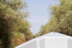 Biosfera del delta de Danubio foto de archivo