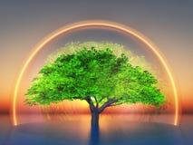 biosphere Imagens de Stock