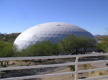 Biosphere Lung Royalty Free Stock Photos