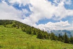 Biosphere reserve Chuprene and peak Midzhur Stock Photography