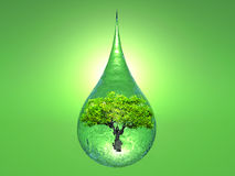 Biosphere. A tree inside a drop of water on green background royalty free stock photo