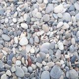 biot de la plage àde La Photographie stock libre de droits