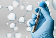 Biotech zdjęcie royalty free
