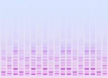Biotech Стоковые Фотографии RF
