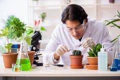 Biotechnologia chemik pracuje w lab zdjęcie stock