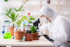 Biotechnologia chemik pracuje w lab obrazy royalty free