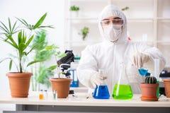 Biotechnologia chemik pracuje w lab zdjęcia royalty free