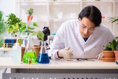 Biotechnologia chemik pracuje w lab obraz royalty free