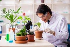 Biotechnologia chemik pracuje w lab fotografia royalty free