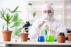 Biotechnologia chemik pracuje w lab obrazy stock