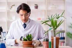 Biotechnologia chemik pracuje w lab zdjęcia stock