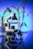 Biotechnologia i kwiecisty nauka temat Zdjęcia Stock