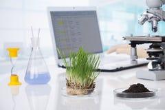 biotechnologie Stockfoto