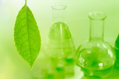 Biotechnologie van Groene aard kruidenextractie in laboratorium royalty-vrije stock afbeeldingen