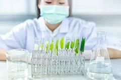 Biotechnologieconcept met wetenschapper in laboratorium stock foto's