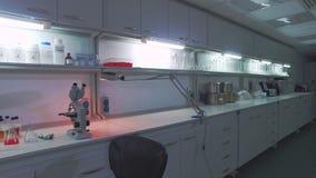 Biotechnologielabortabelle Arbeitsplatz des biomedizinischen Wissenschaftlers stock video
