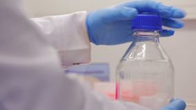 Biotechnologist bereidt een fles voor chemisch experiment voor stock videobeelden