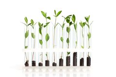 Biotechnology. Agriculture agronomy background biochemistry biology development Stock Image