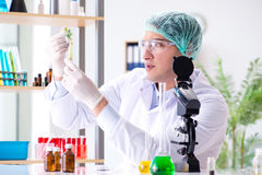 The biotechnology concept with scientist in lab Royalty Free Stock Photography