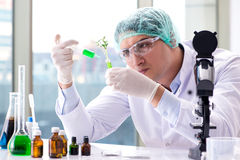 The biotechnology concept with scientist in lab Stock Photos