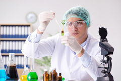 Biotechnology concept with scientist in lab Royalty Free Stock Image