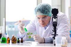 The biotechnology concept with scientist in lab Royalty Free Stock Images