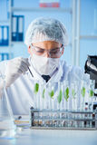The biotechnology concept with scientist in lab. Biotechnology concept with scientist in lab Stock Photos