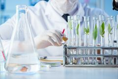 The biotechnology concept with scientist in lab Stock Photography