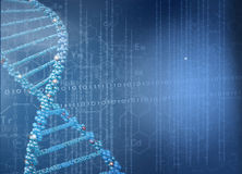 Biotechnology genetic research royalty free stock photos