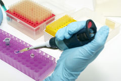 Biotechnology laboratory research Stock Photos