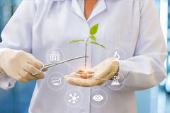 Biotechnology researcher concept. Stock Photography
