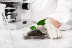 Biotechnology Royalty Free Stock Images