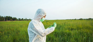 Biotechnology scientist on summer field. Biotechnology scientist in protective uniform examines green plant on summer field Royalty Free Stock Photography