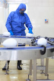 Biotecnologia - concetto della fabbrica dell'uovo del gmo immagine stock