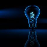Biotecnologia del DNA Fotografie Stock Libere da Diritti