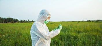 Bioteknikforskare på sommarfält royaltyfri fotografi